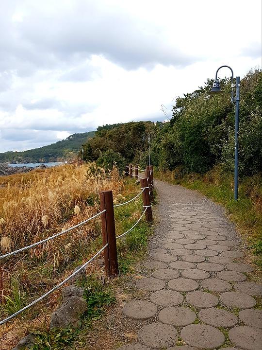 제주도, 바다, 길, 산책, 가을, 겨울