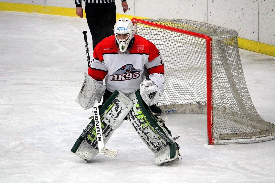 Hockey, Goalkeeper, 1, League, Slovakia