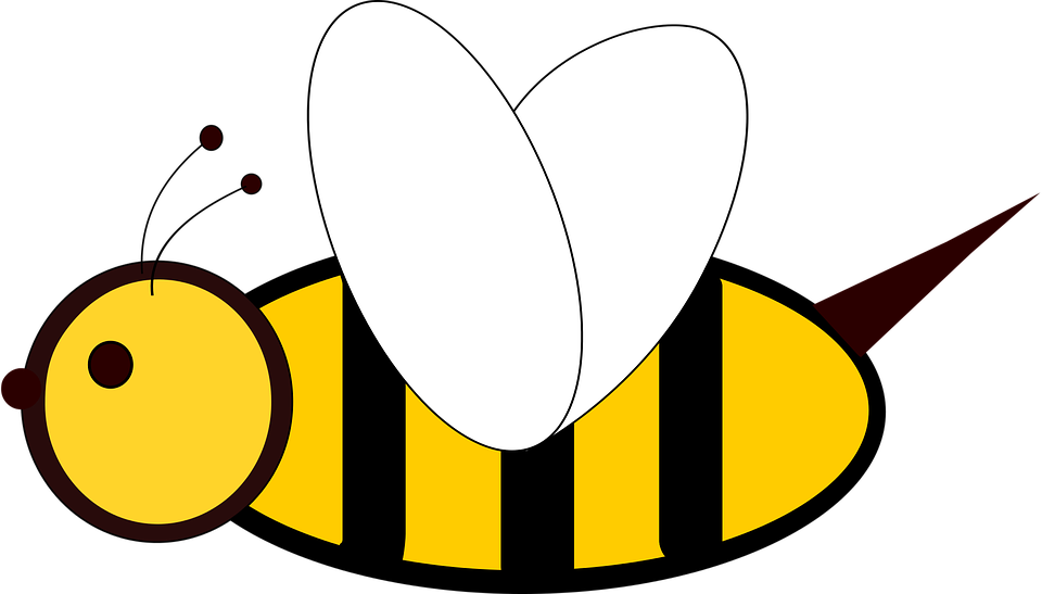 Bee, Insect, 2d