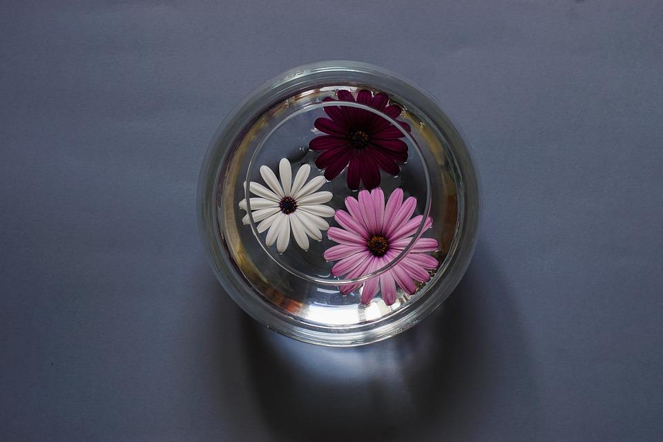Composition, Flowers, A Glass Vessel, Water, Still Life