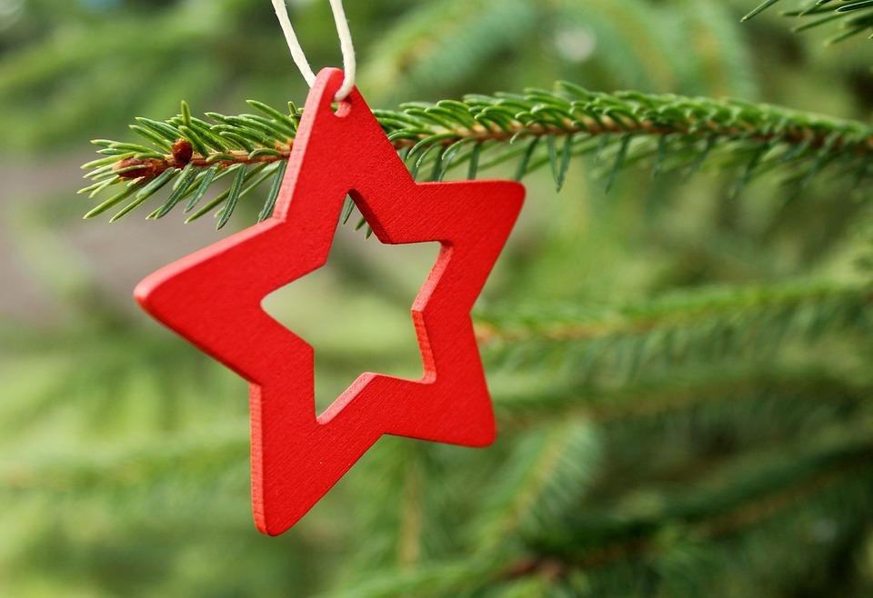 Asterisk, A Red Asterisk, Christmas Tree, Tree, Branch
