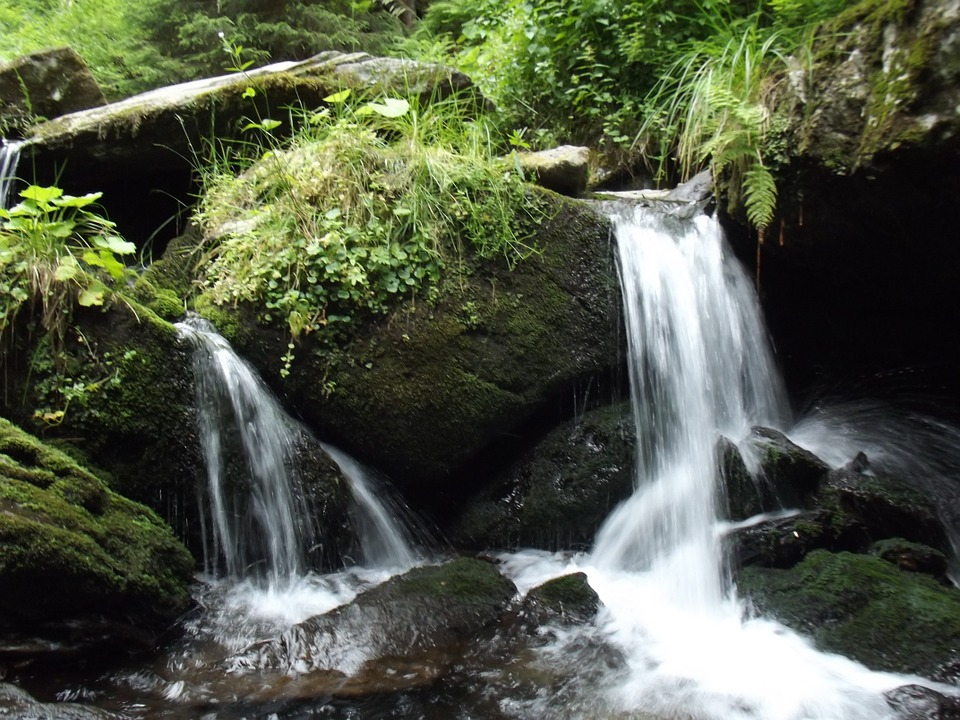 Water, River, A Stream Of Water, Flowing, Waterfall