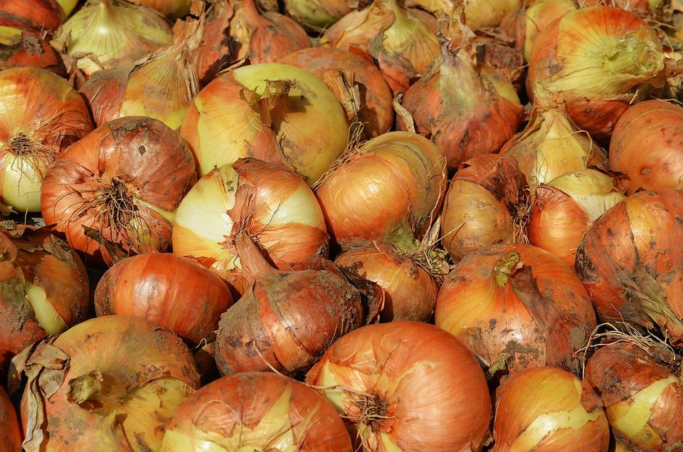 Onion, Vegetables, A Vegetable, Cooking, Eating