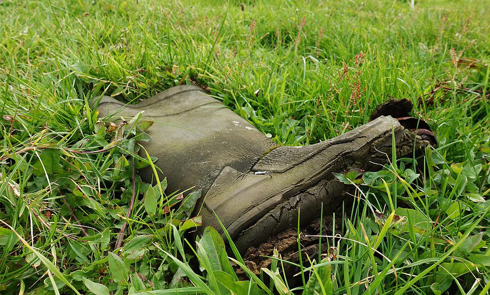 Boot, Shoe, Lost, Abandoned, Orphan, Grass, Pasture