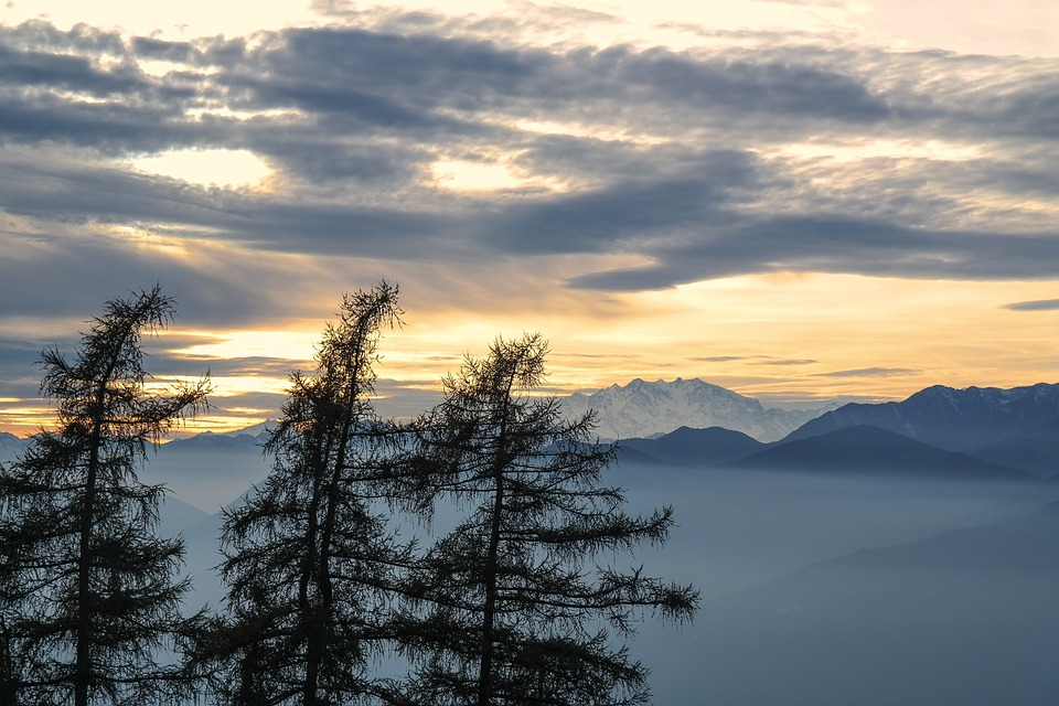 Abendstimmung, Evening Sky, Mountains, Treetops, Trees