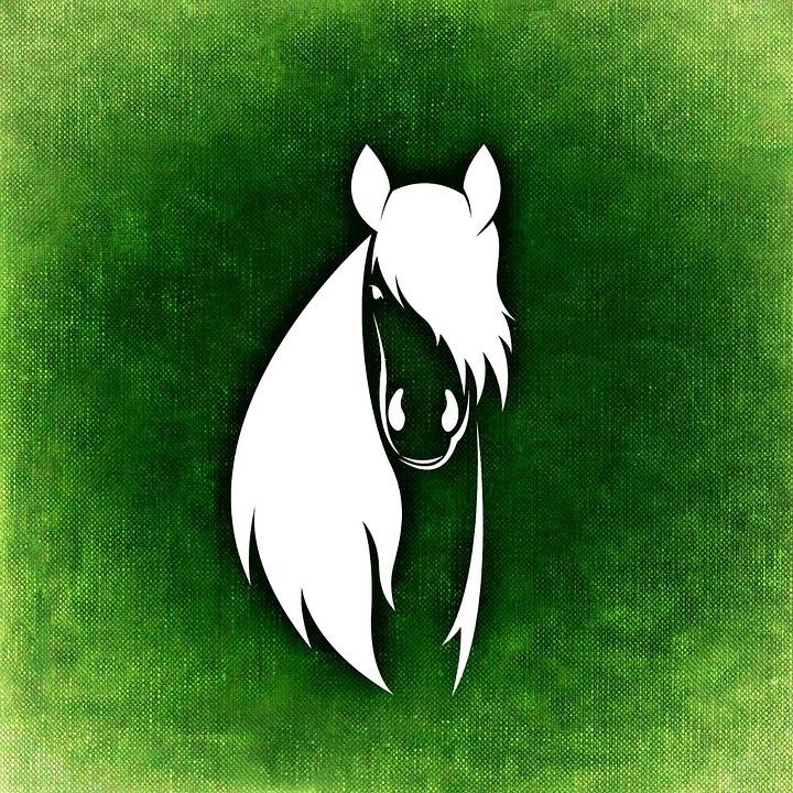 Horse, Abstract, Mane, Elegant, Animal World, Beautiful