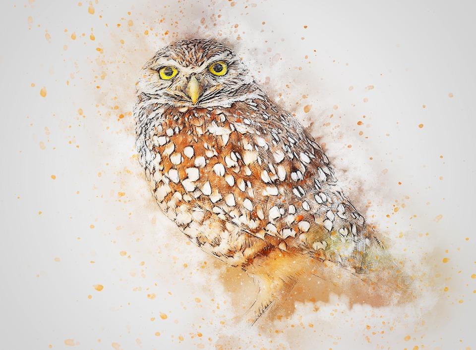 Bird, Animal, Owl Art, Abstract, Watercolor, Vintage