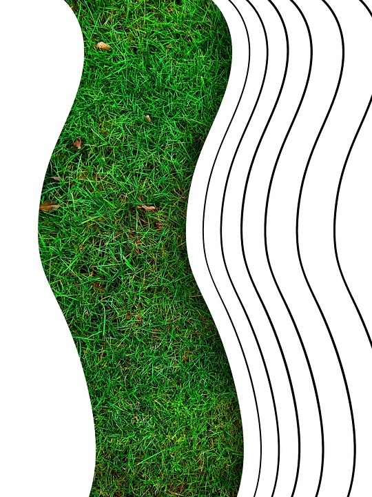 Design, Abstract, Rush, Meadow, Green, Pattern