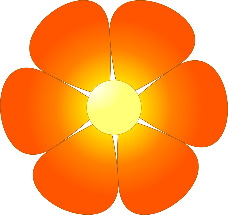 Flower, Abstracts, Orange, Petals, Close Up, Colourful