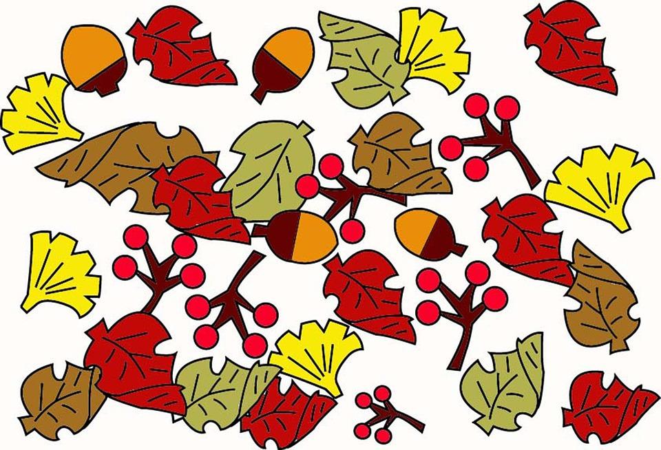 Autumn, Fallen Leaves, Acorn