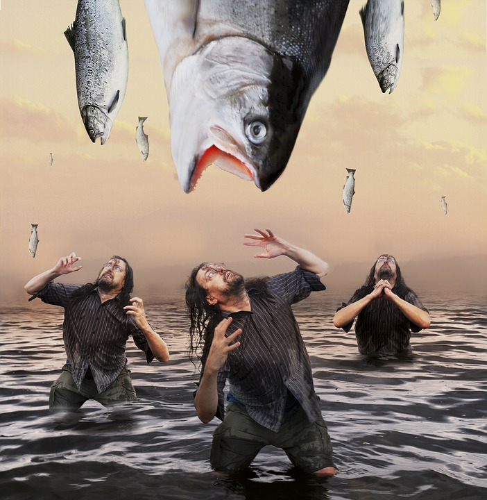 Fish, Water, Man, Desperate, Action, Ask, Scary