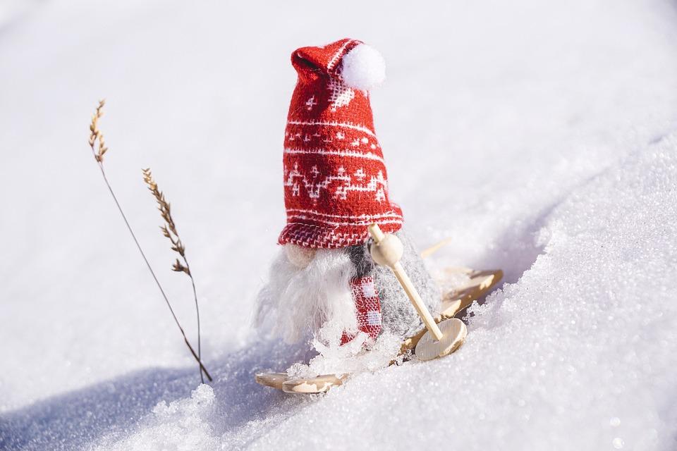 Winter, Skiing, Winter Sports, Fun, Snow, Ski, Activity