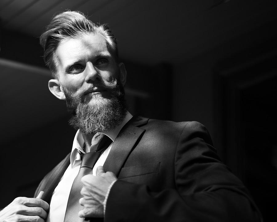 Portrait, Adult, People, Man, Beard, Boldness, Business