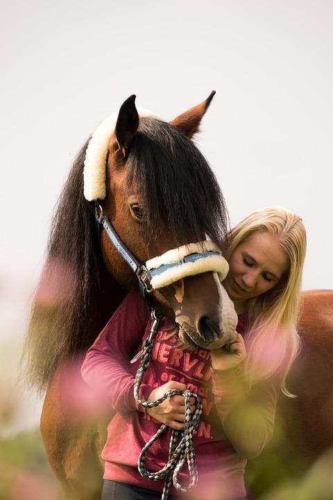 Cavalry, Portrait, Mammal, Human, Adult, Girl, Woman