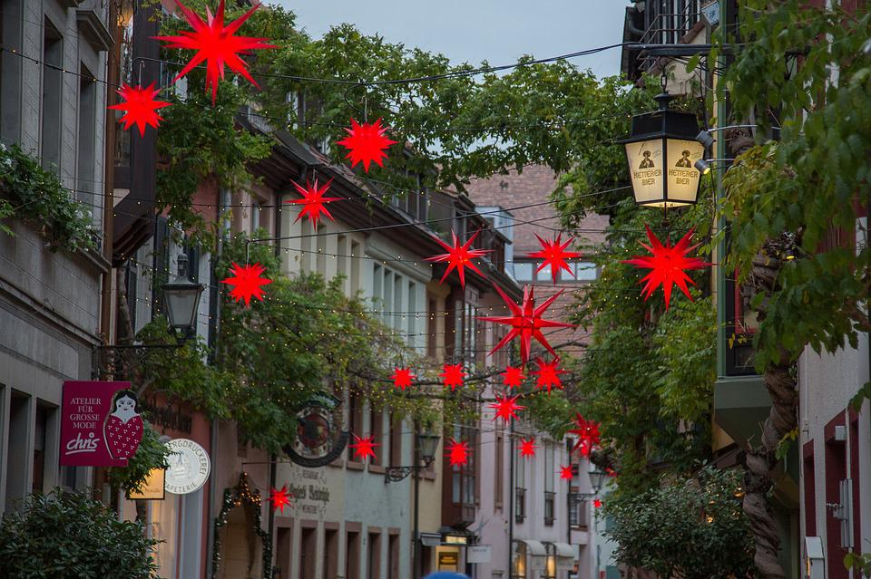 Christmas, Poinsettia, Advent, Freiburg