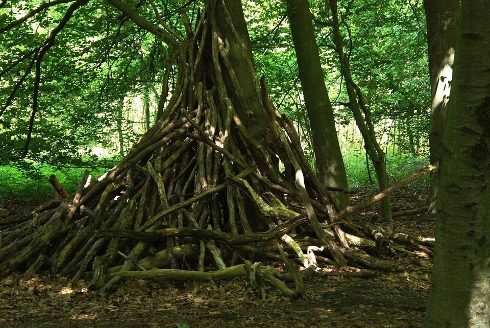 Adventure, Forest, Trees, Play, Children, Hut