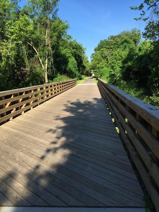 Path, Bridge, Travel, Wooden, Adventure, Scenic