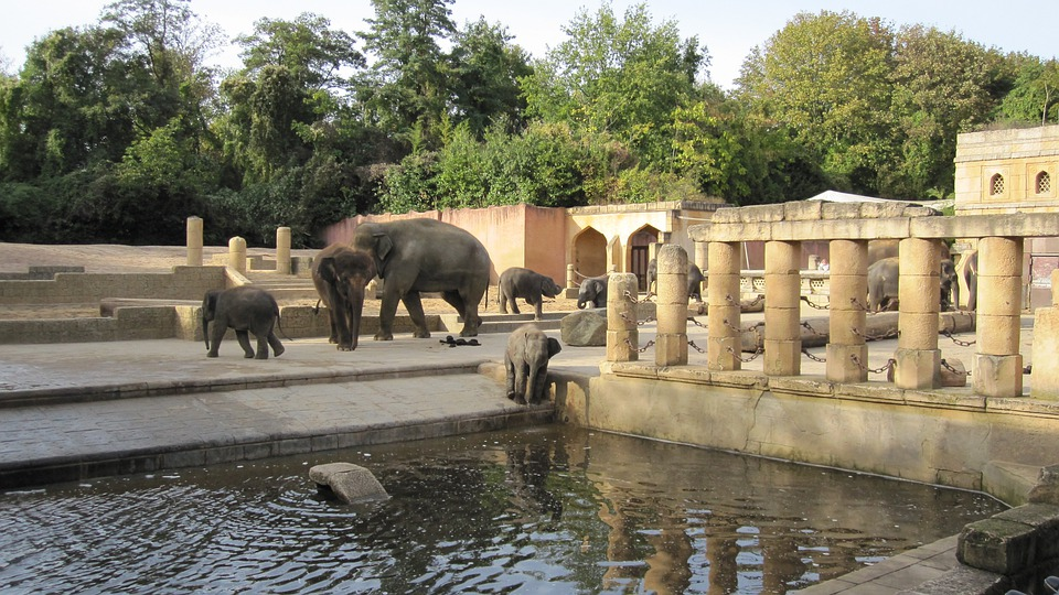 Zoo Hannover, Jungle Palace, Adventure Zoo