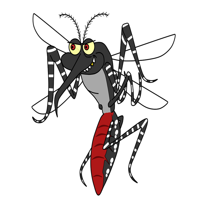 Aedes Aegypti, Cartoon, Illustration, Disease, Charge