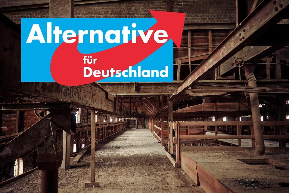 Alternative For Germany, Afd, Völkisch-nationalist