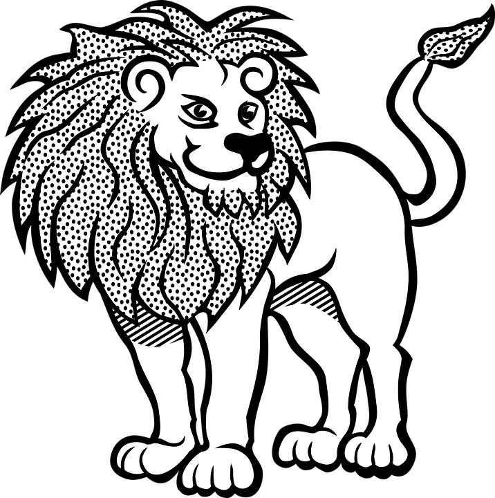 Africa, Animal, Cat, Lion