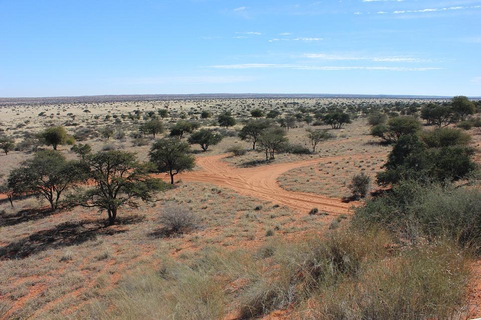 Desert, Namibia, Africa, Dunes, Desert Landscape