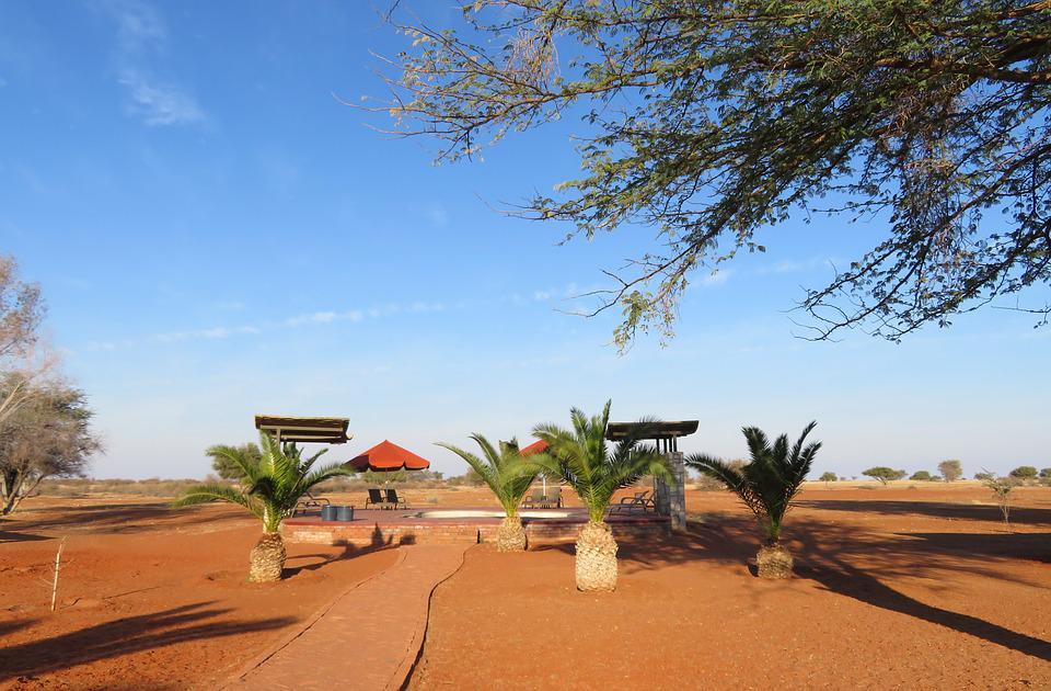 Free Photo Africa Lodge Hotel Swimming Pool Dream Namibia