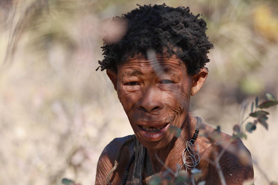 Africans, Bushman, Indigenous, Black, Human, Person