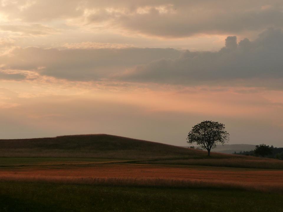 Tree, Abendstimmung, Sunset, Afterglow, Landscape