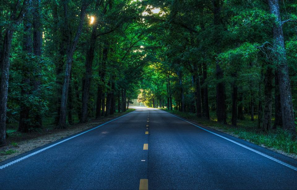 Road, Rural, Country, Trees, Afternoon, Travel