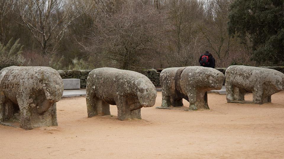 Bulls, Guisando, Avila, Sculpture, Boar, Vetones, Age