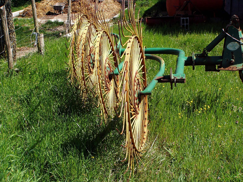 Agricultural Machine, Agriculture, Grass, Work, Tools