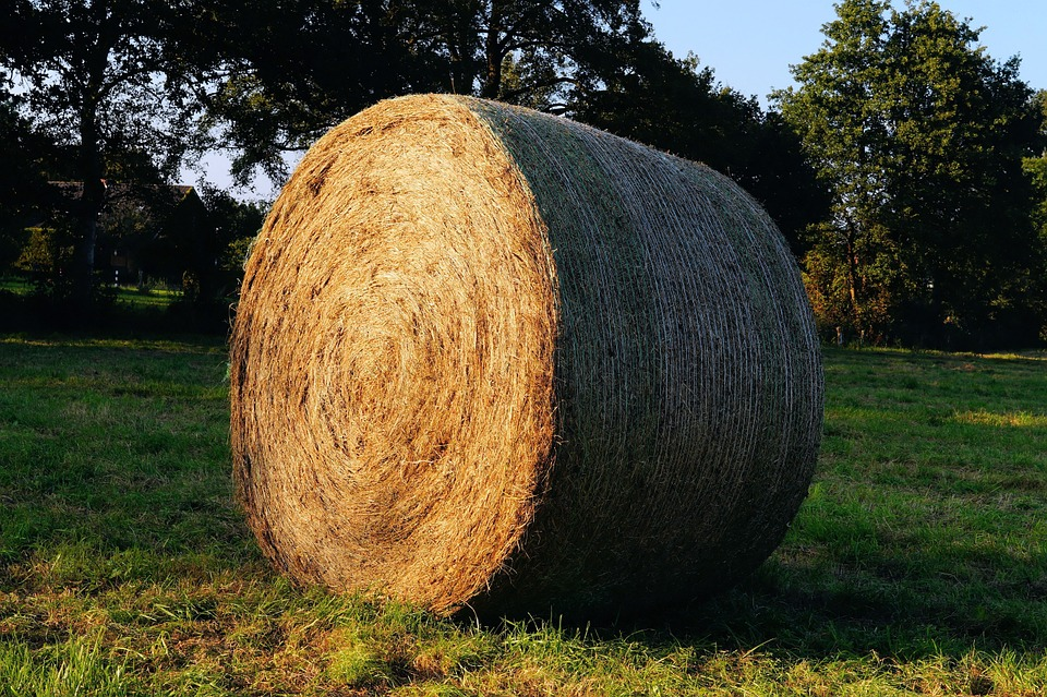 Hay Bales, Round Bales, Hay, Agriculture, Cattle Feed