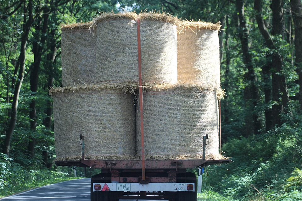 Bale, Straw Bales, Agriculture, Cattle Feed, Wrapped Up