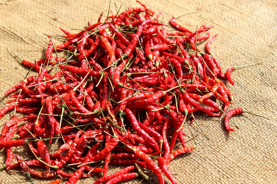 Chilli, Agriculture, Food, Vegetable, Nutrition