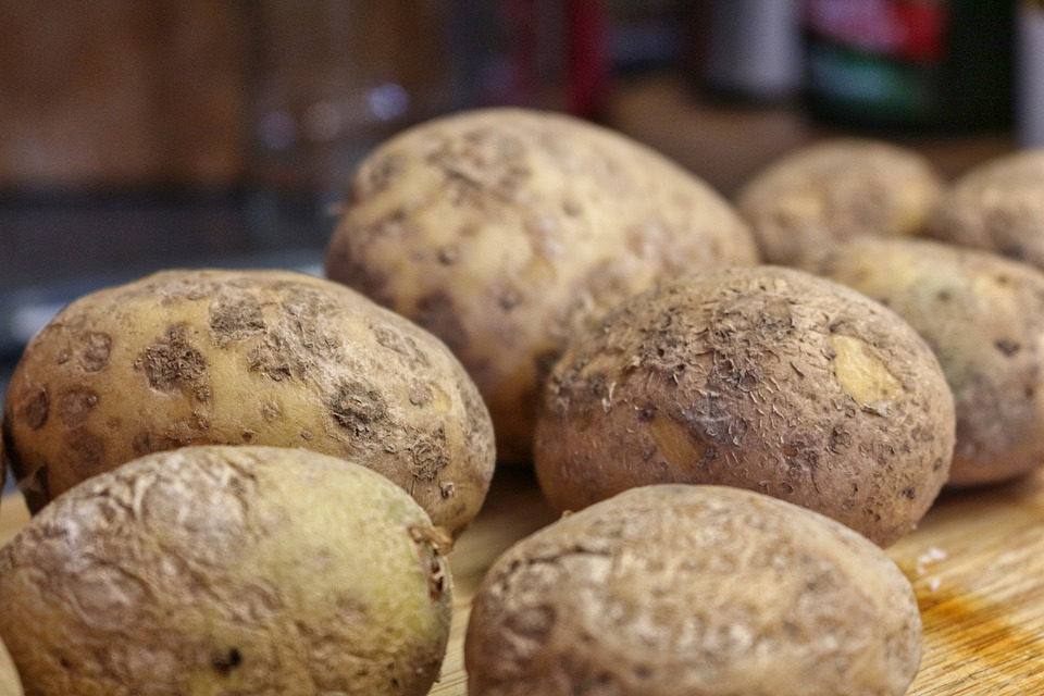 Potatoes, Food, Nutrition, Fresh, Agriculture