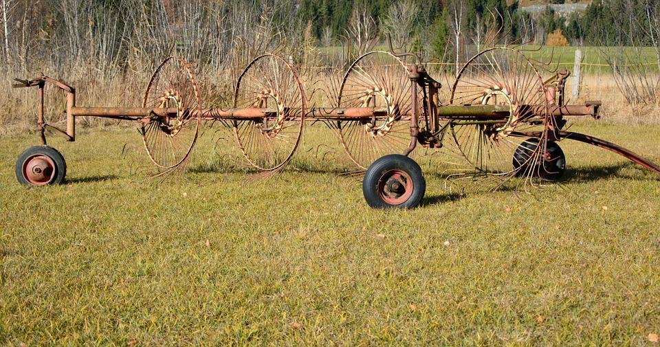 Hay Tedders, Hay, Grass, Faceplate, Agriculture