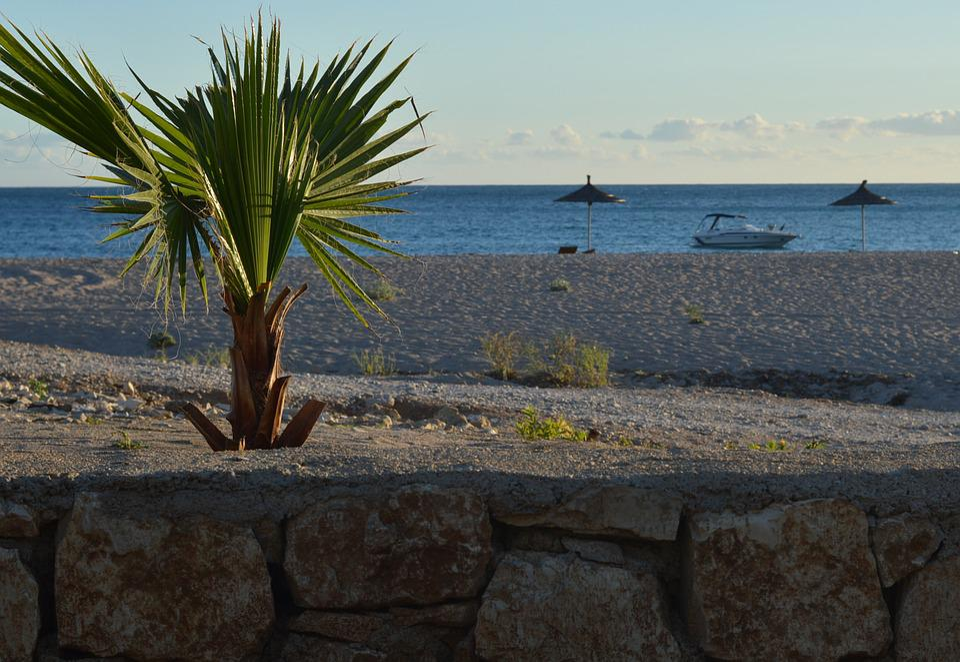 Livadh, Himara, Albania, Sea, Beach, Palm Trees, Palma