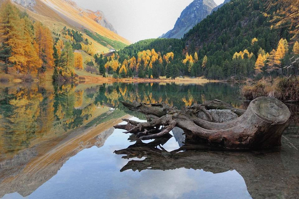 Lake, Albulatal, Mountain Valley, Ch, Switzerland
