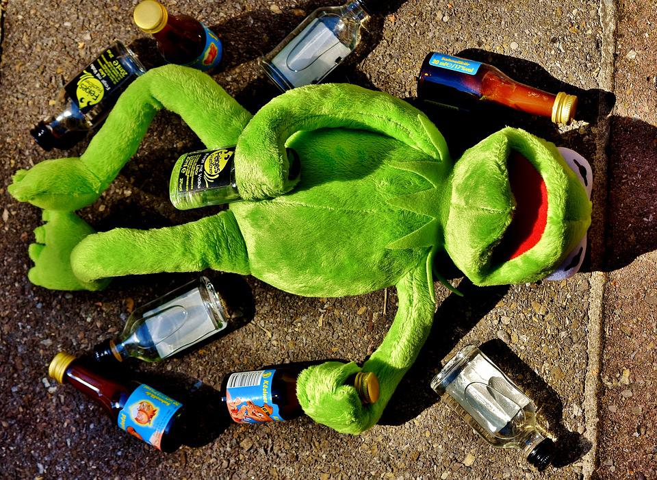 Kermit, Frog, Drink, Alcohol, Drunk, Rest, Sit, Figure