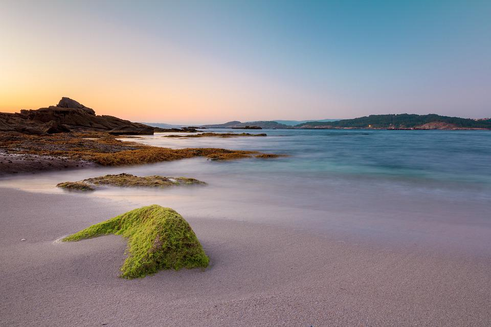 Beach, Galicia, Ria, Aldán, Algae, Rocks, Sea, Sunset