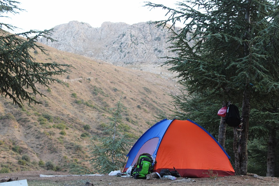 Camping, Forest, Algeria