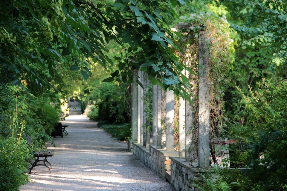 Green, Park, Garden, The Path, Alley, Bench, Tree