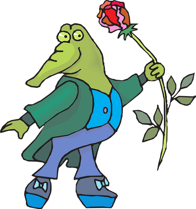 Flower, Rose, Clothing, Suit, Standing, Alligator