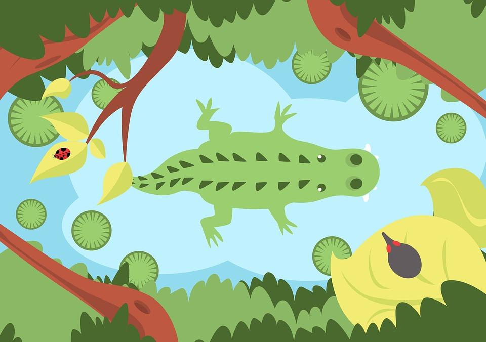 Alligator, Green, Jungle, River, Crocodile, Animals