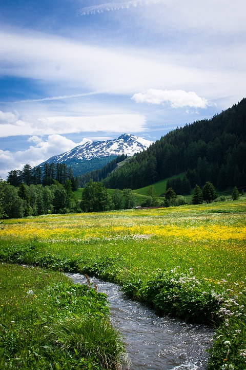 Alm, Pasture, Meadow, Mountain, Panorama, View, Summit