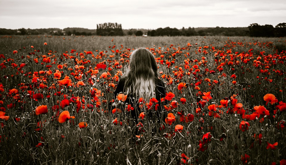 People, Woman, Girl, Alone, Solo, Field, Nature, Trees