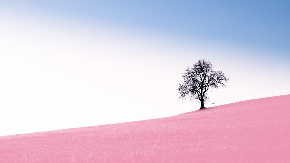 Nature, Landscape, Background, Panorama, Alone, Sky