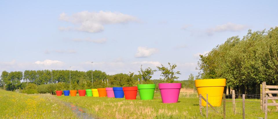 Flower Pots, Along The Highway, Summer