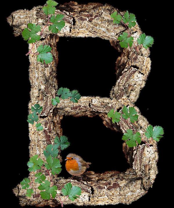 Alphabet, Letter, Rustic, Timber, Bark